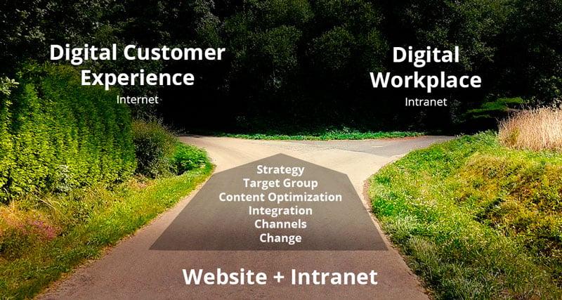 CMS - website versus intranet